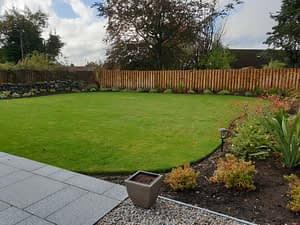 Home Gerbera Garden Design